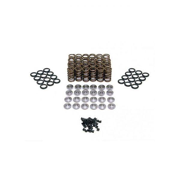 Ferrea Valve Spring Kit K20C1